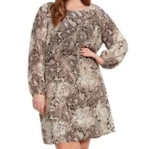 DEX Snake Print Shift Dress 2X
